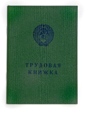 Так выглядит трудовая книжка (фото: solo122 - Fotolia.com).