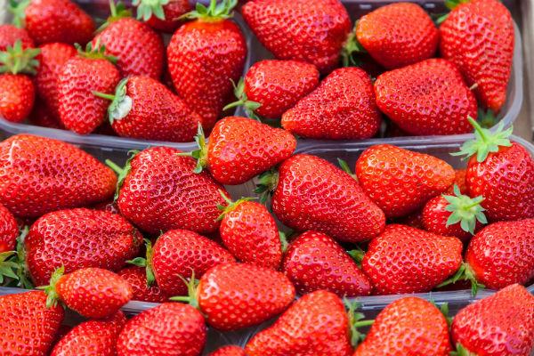 Выбираем сорт клубники (фото: elitravo - Fotolia.com).