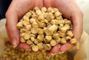 Выгодно ли производить пеллеты? (Фото: lipetskmedia.ru)