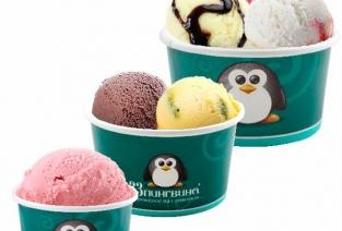 Кафе-мороженое «ЗЗ пингвина» может стать вашим. Фото с сайта http://gazeta.dalpress.ru
